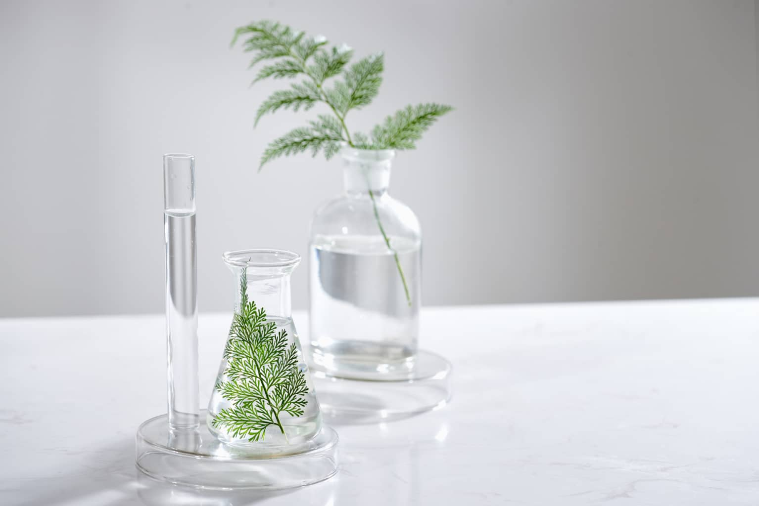 Focus sur la composition de cosmétiques naturels